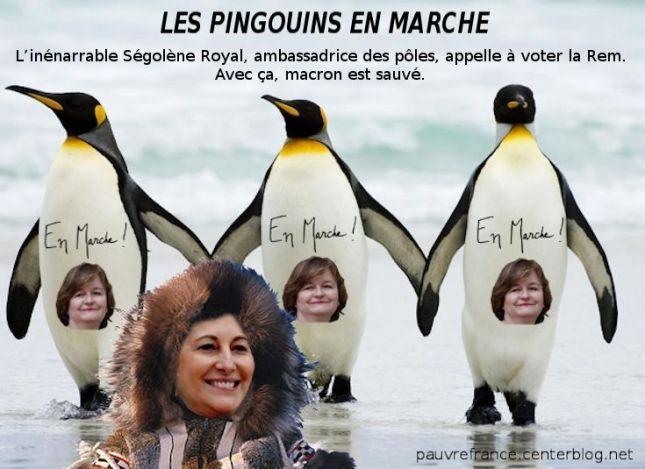 Le dessin du jour (humour en images) - Page 26 Segolene_Royal_vote_LaREM