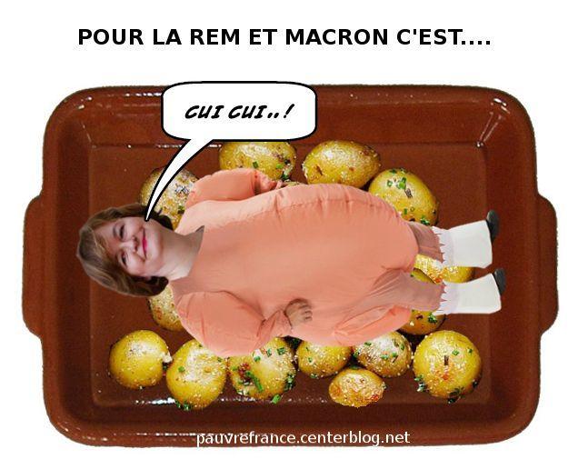 Le dessin du jour (humour en images) - Page 26 Loiseau_cui-cui