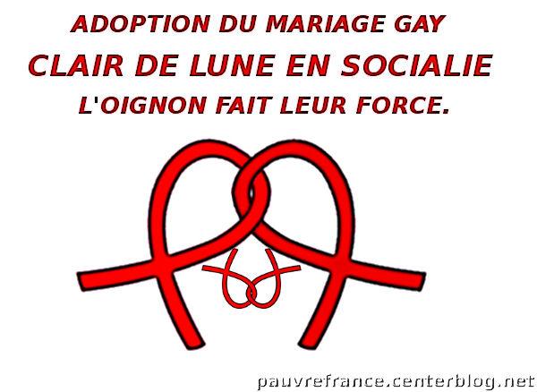 Lois d'état adoption gay